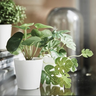 Штучні рослини та квіти